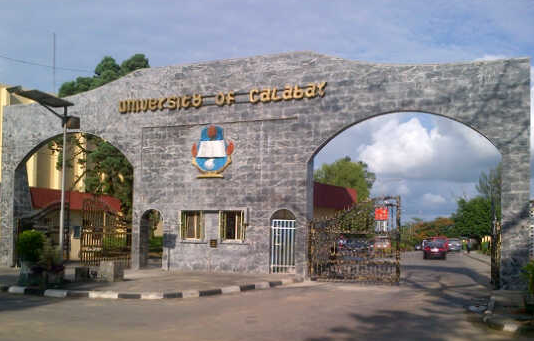 science courses unical