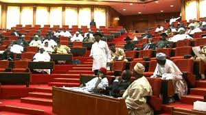 Salaries of Nigerian Senators: A Detailed Breakdown