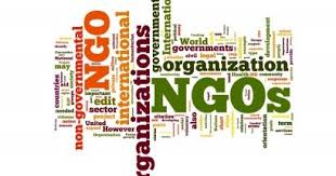 NGOs in Abuja: The Full List