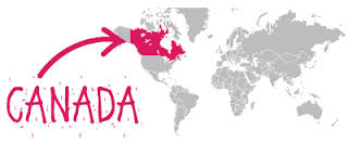 PhD Scholarship in Canada: How to Register Easily