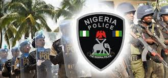 History of Nigeria Police: Facts You Need to Know