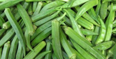 Okra Farming in Nigeria: Step by Step Guide