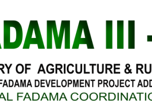 Fadama Farming in Nigeria: What You Need to Know