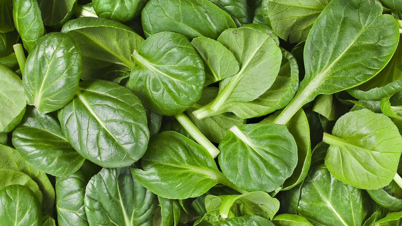 What is Spinach in Yoruba Language?