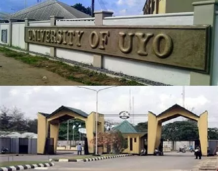 science courses uniuyo