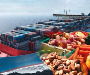 10 Hottest Agricultural Export Products in Nigeria