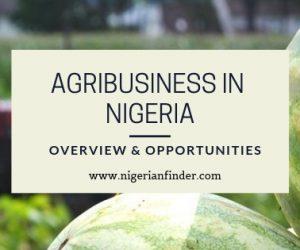 Agribusiness in Nigeria