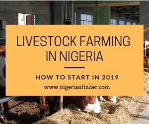Livestock Farming in Nigeria