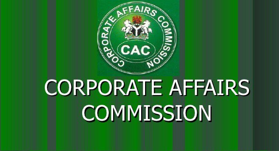 CAC Public Search: How to Check Registered Company Names