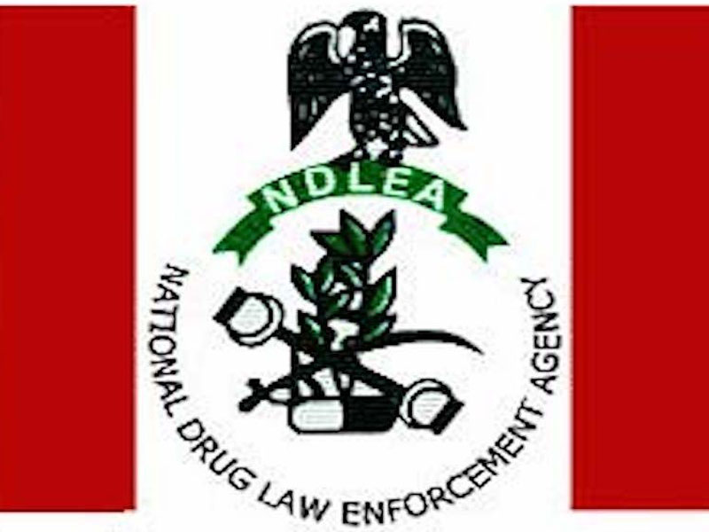 Functions of the NDLEA and brief History