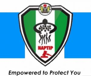 Functions of NAPTIP