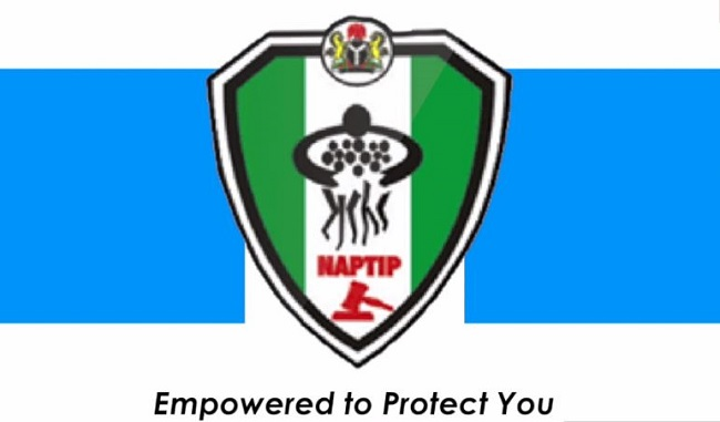 Functions of NAPTIP