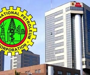 functions of nnpc