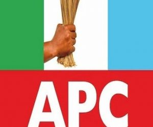 List of APC Governors & Their States