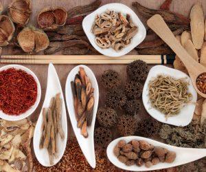 Yoruba Herbs for Fertility