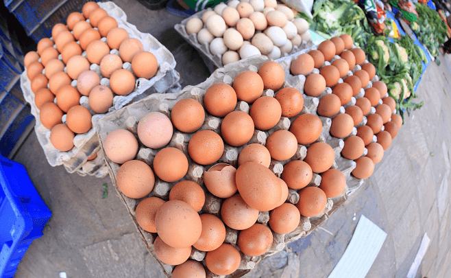 Egg Selling Business in Nigeria
