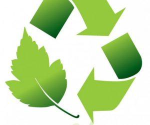 Environmental Management Courses in Nigeria