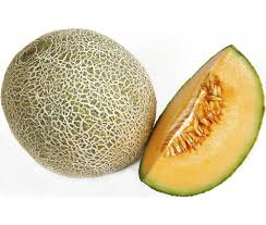 Melon Business in Nigeria