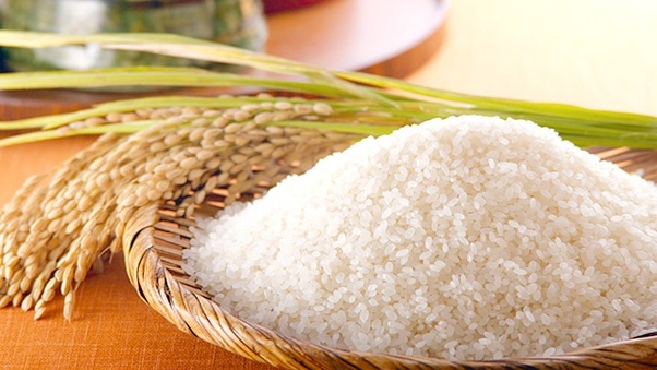 Rice Business in Nigeria