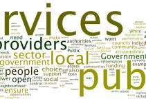 Ways of Improving the Public Service in Nigeria