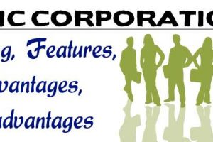 Examples of Public Corporations in Nigeria