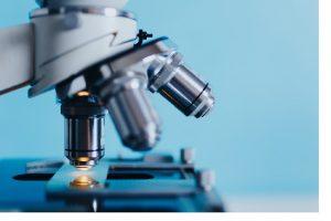 10 Best Universities to Study Biochemistry in Nigeria