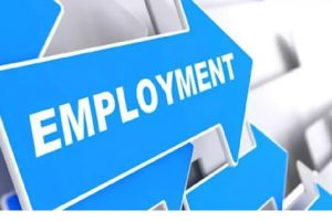 Best Daily Pay Jobs in Ibadan